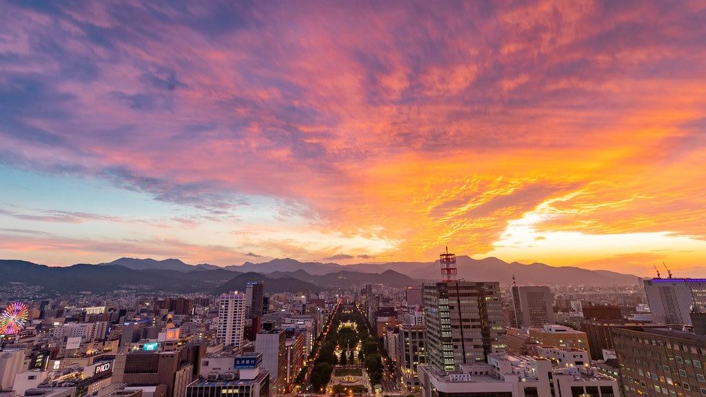 Torre de televisión de Sapporo ofreciendo una ciudad, vistas de paisajes y una puesta de sol
