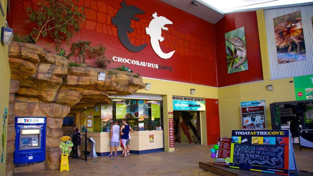 Crocosaurus Cove showing interior views