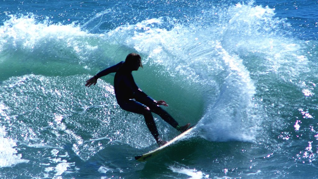 Hamilton which includes waves, surfing and a sporting event