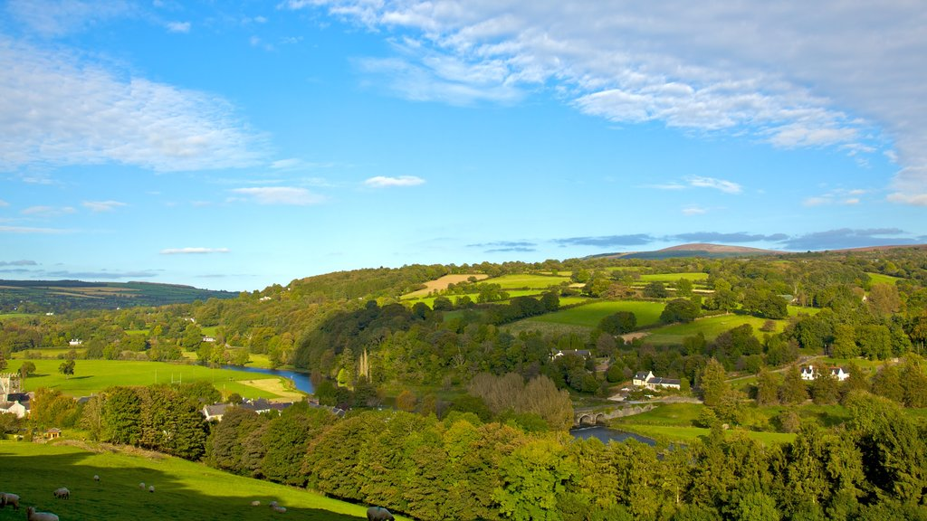 Kilkenny featuring landscape views and tranquil scenes