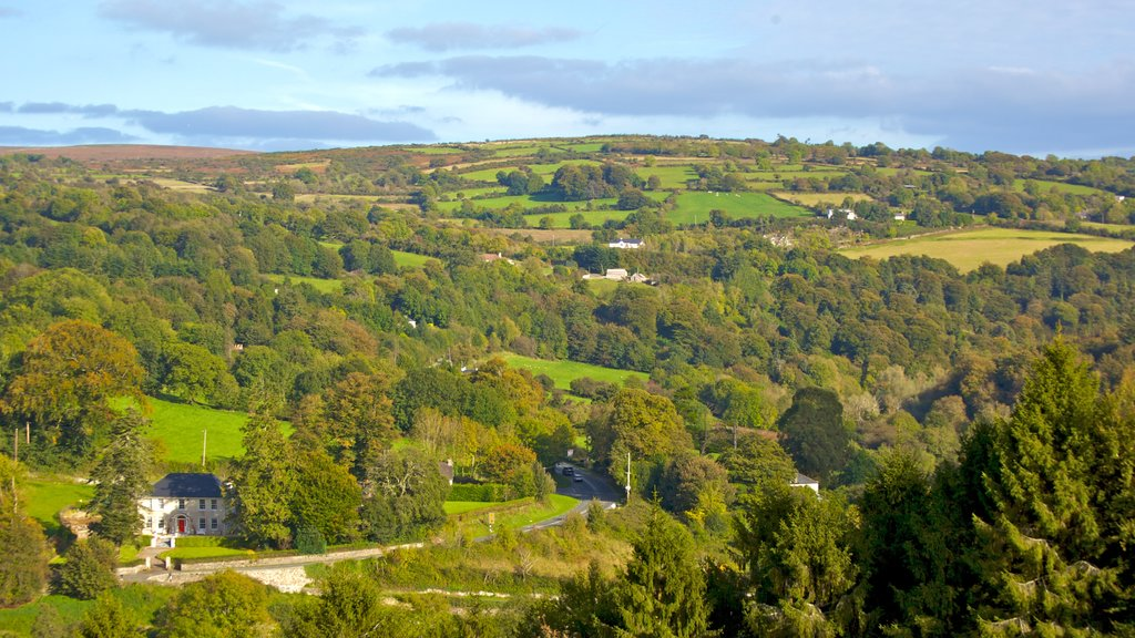 Kilkenny showing landscape views, tranquil scenes and forests