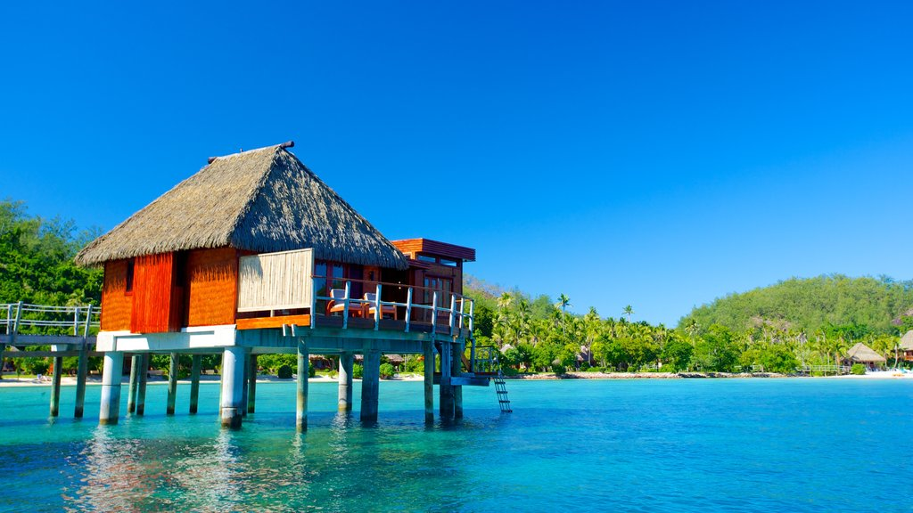 Fiji featuring general coastal views, a coastal town and tropical scenes