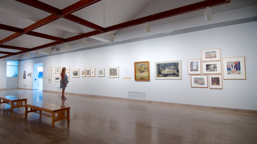 Mendel Art Gallery showing interior views and art as well as an individual femail
