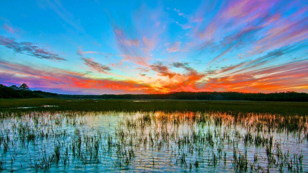 Parque Estatal de Huntington Beach que incluye vistas de paisajes, una puesta de sol y humedales