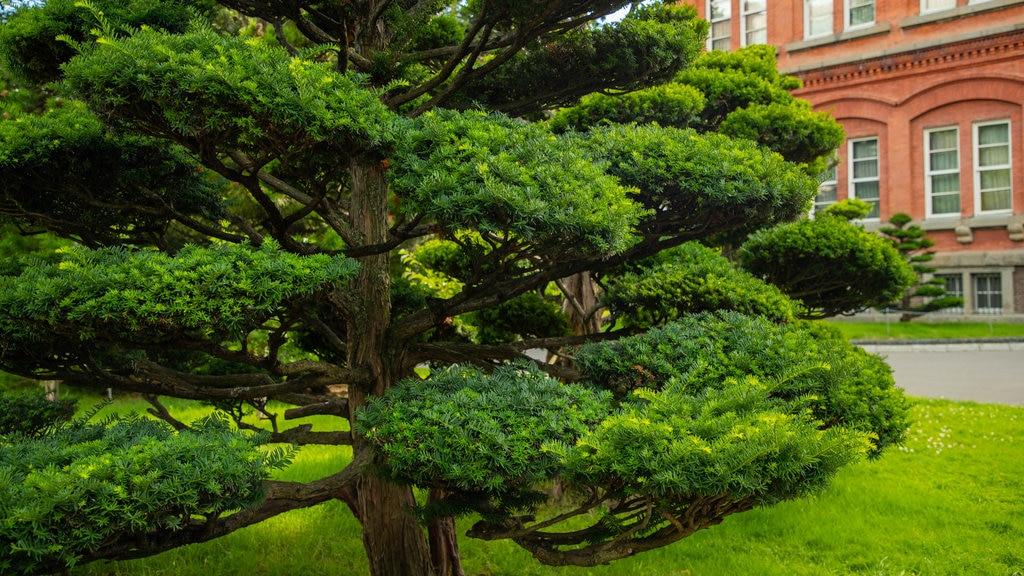 Former Hokkaido Government Office Building featuring a garden