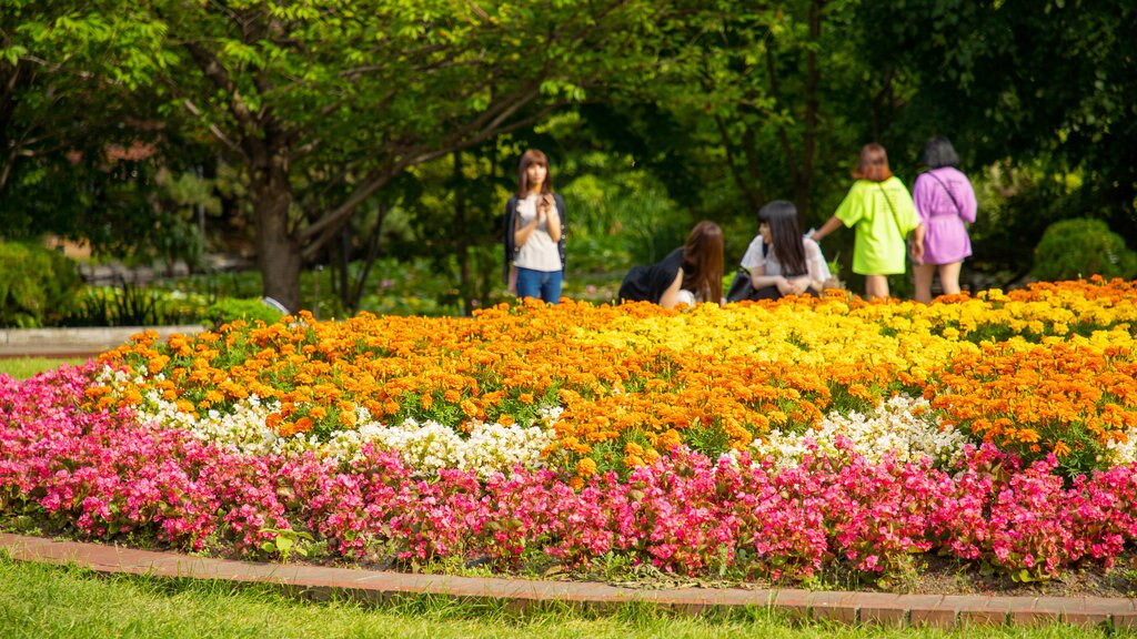 Former Hokkaido Government Office Building showing a park and flowers