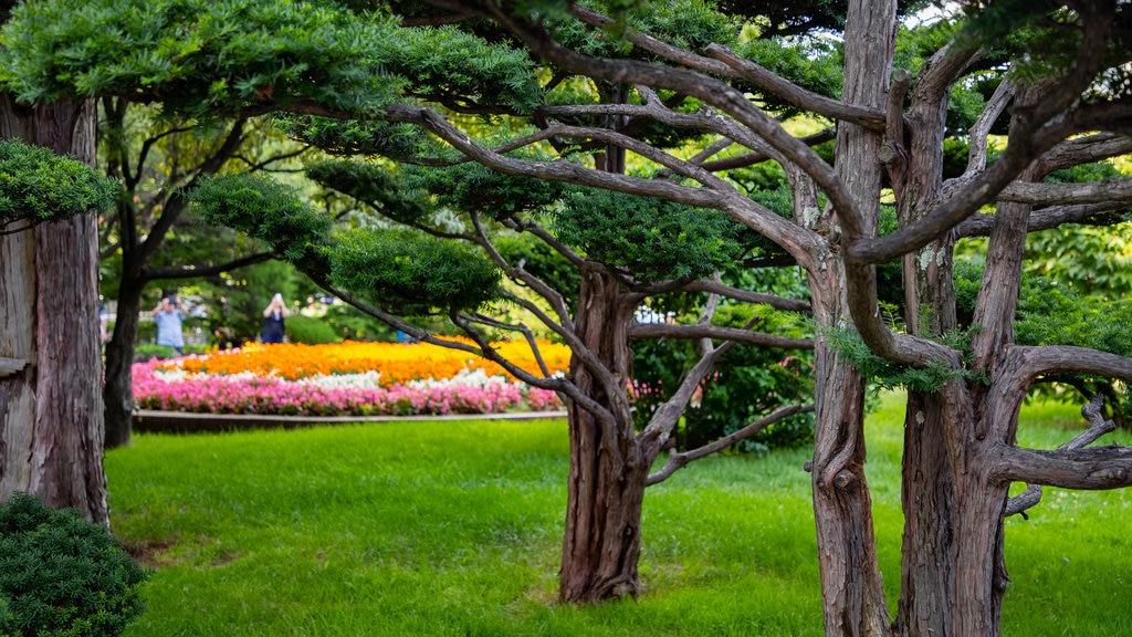 Former Hokkaido Government Office Building showing a garden