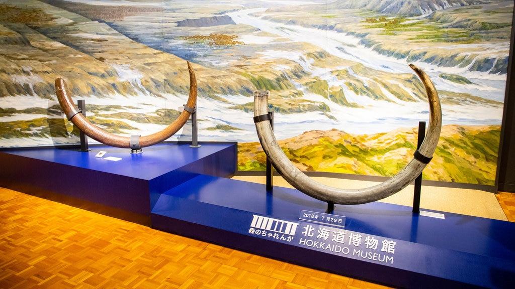 Museo de Historia de Hokkaido que incluye vistas interiores y elementos del patrimonio