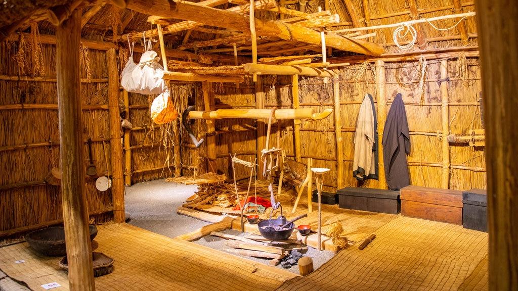 Museo de Historia de Hokkaido que incluye vistas interiores