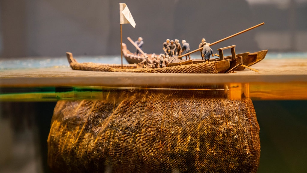 Museo de Historia de Hokkaido