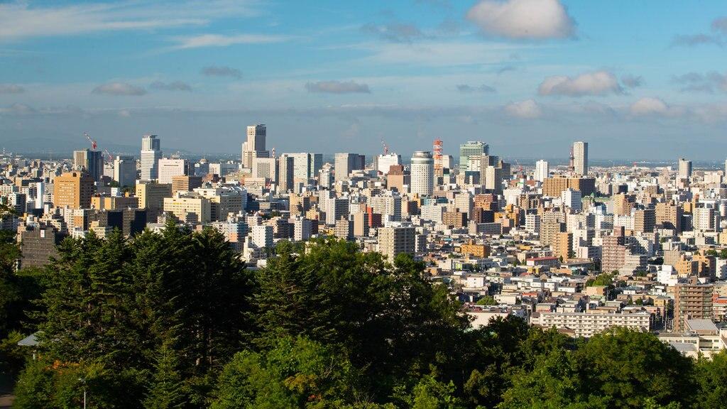 Asahiyama Park showing landscape views and a city