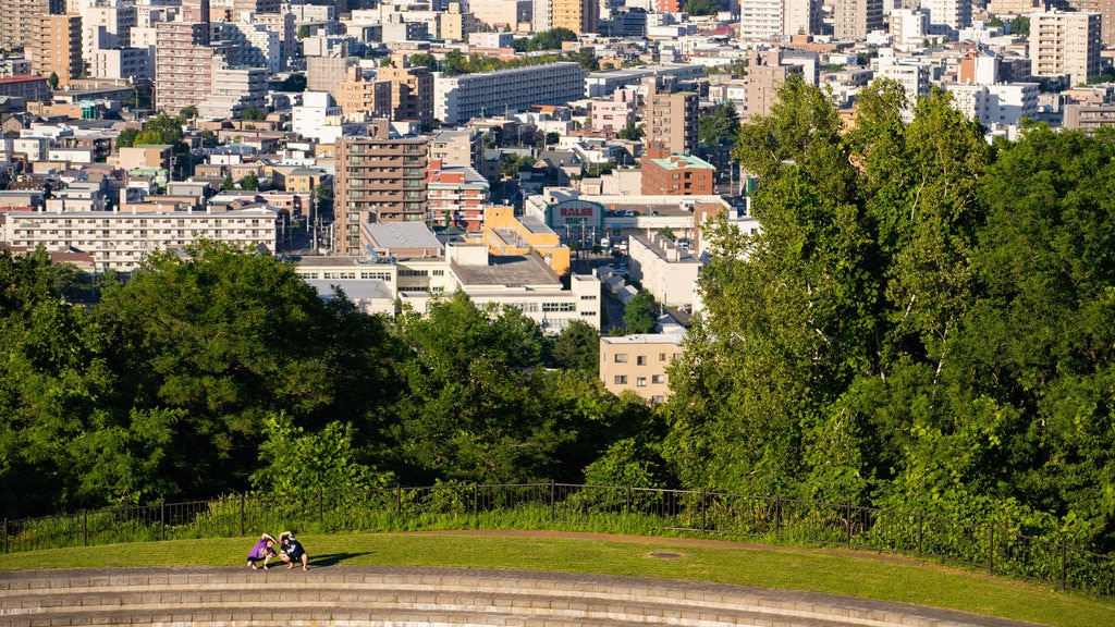 Asahiyama Park showing a city and landscape views as well as a couple
