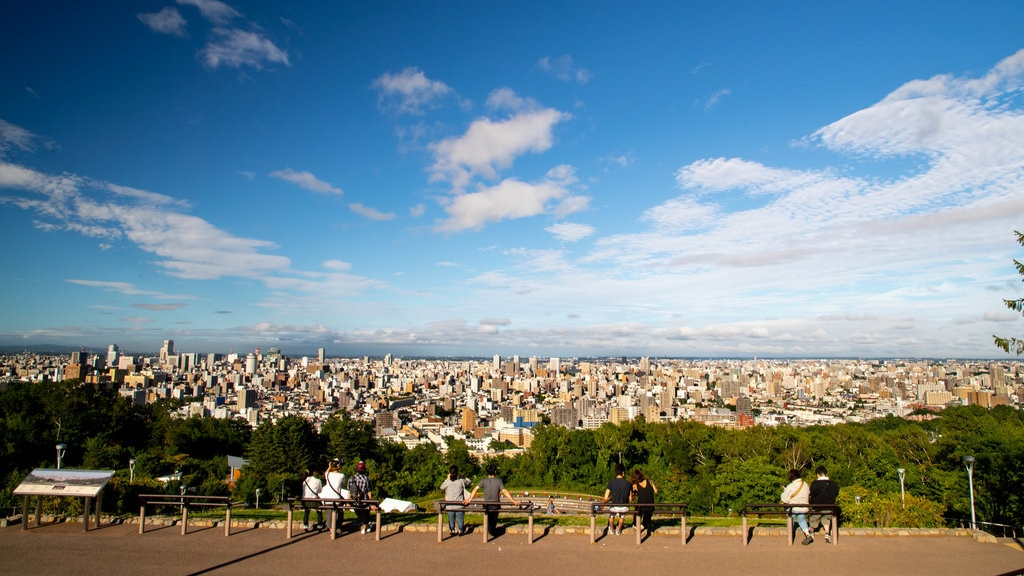Asahiyama Park which includes landscape views, views and a city