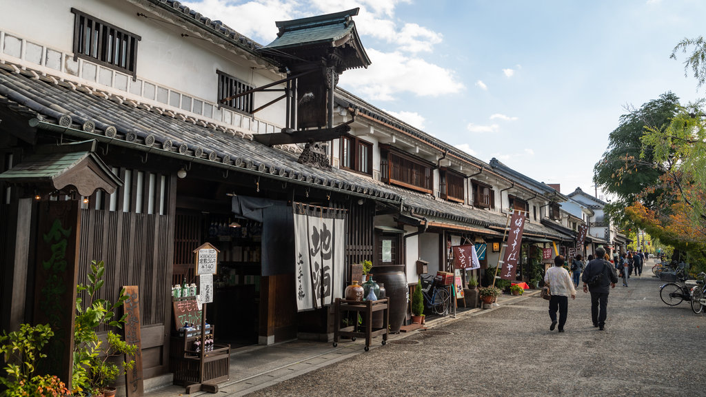 Bikan Historical Area featuring street scenes and a small town or village as well as a couple