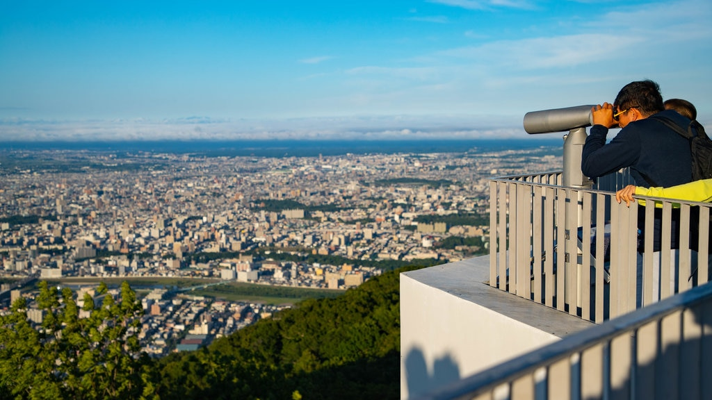 Mount Moiwa showing views, landscape views and a city