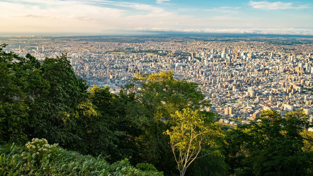 Mount Moiwa which includes a sunset, landscape views and a city