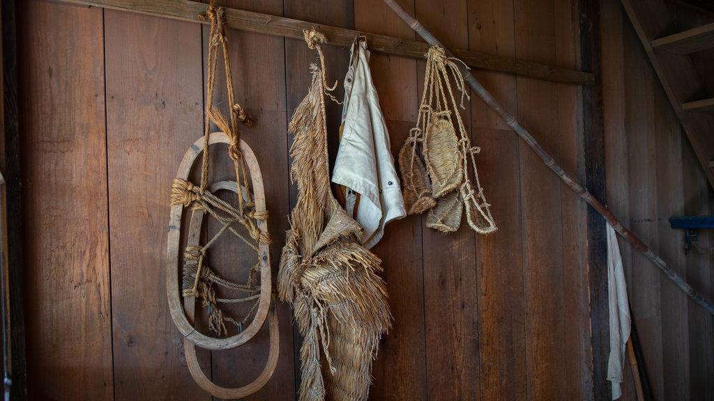 Pueblo histórico de Hokkaido ofreciendo elementos del patrimonio