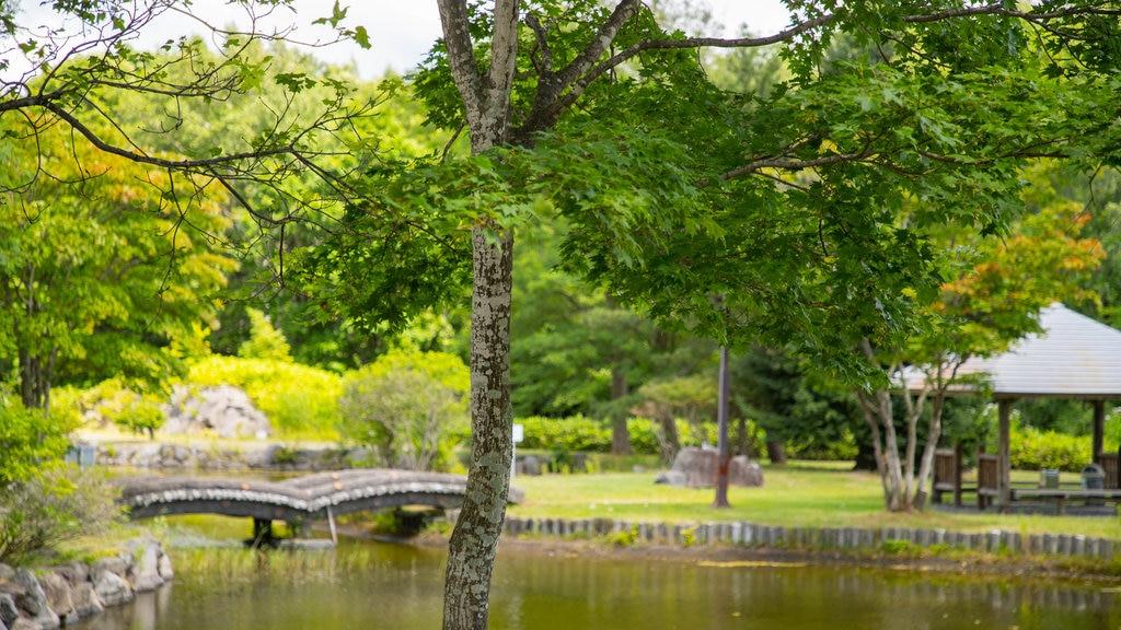 Pueblo histórico de Hokkaido que incluye un estanque
