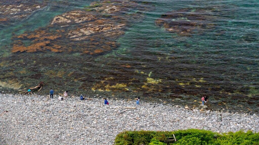 Shakotan Peninsula which includes general coastal views and a pebble beach