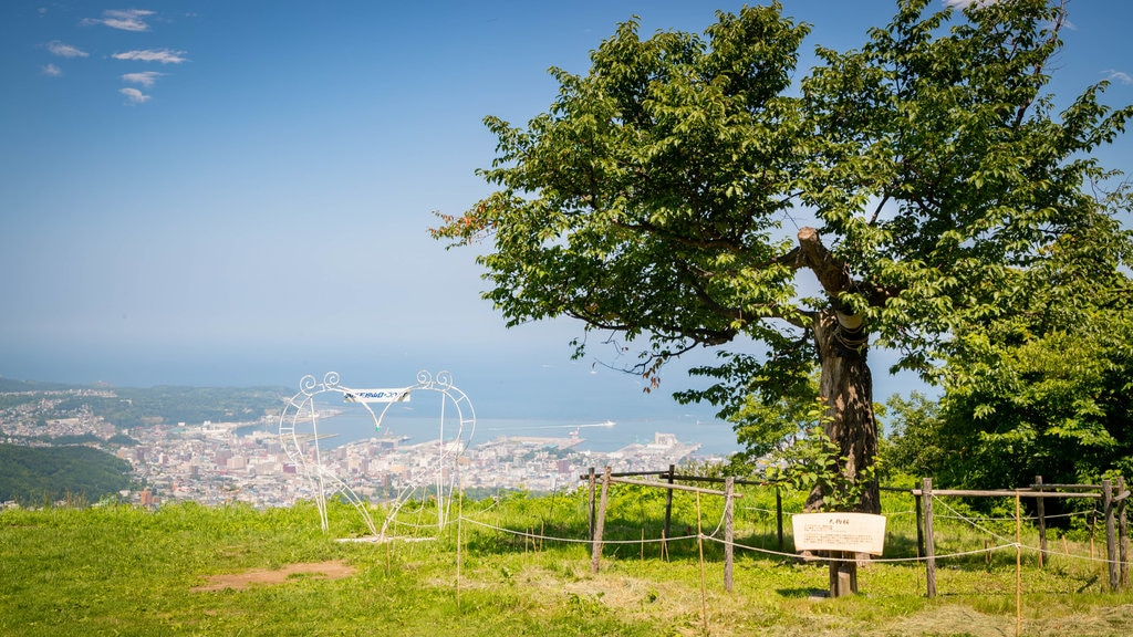 Mount Tengu showing views, a garden and a coastal town