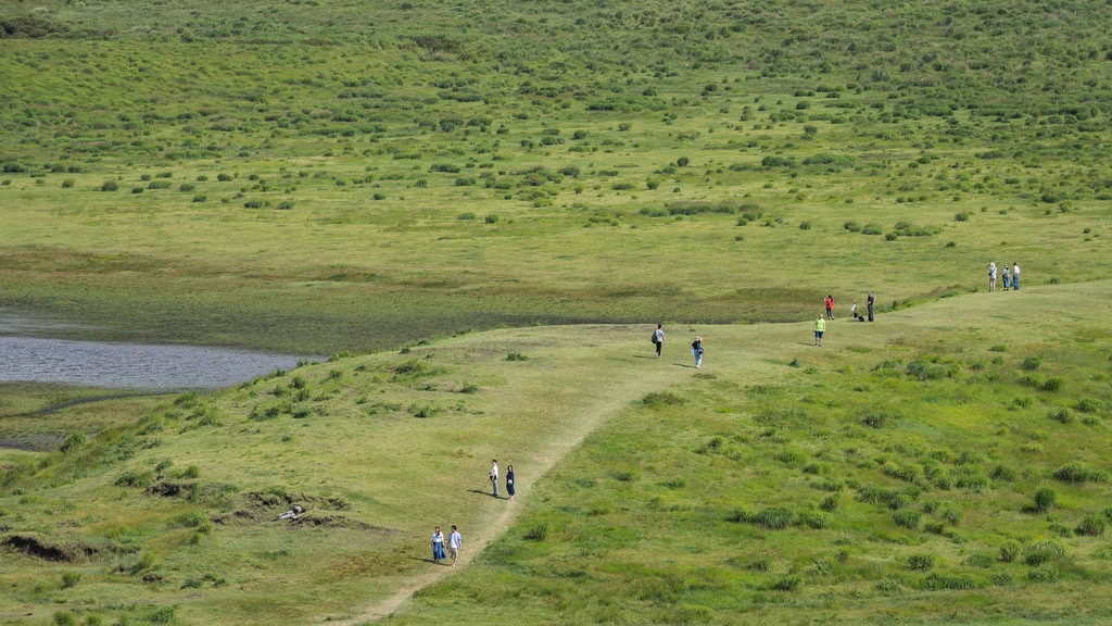 Mount Aso which includes hiking or walking, tranquil scenes and landscape views