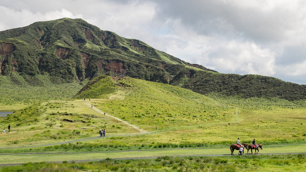 Mount Aso which includes mountains, tranquil scenes and horseriding