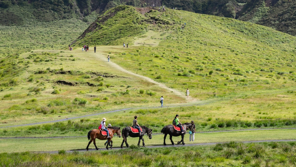 Mount Aso featuring tranquil scenes and horseriding