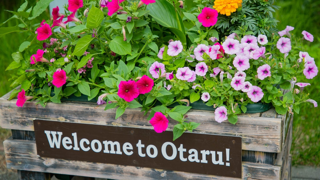 Otaru City General Museum Ungakan showing flowers and signage