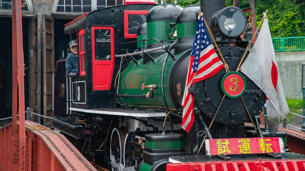Museo General Ungakan de la Ciudad de Otaru mostrando elementos del patrimonio y artículos de ferrocarril y también un hombre