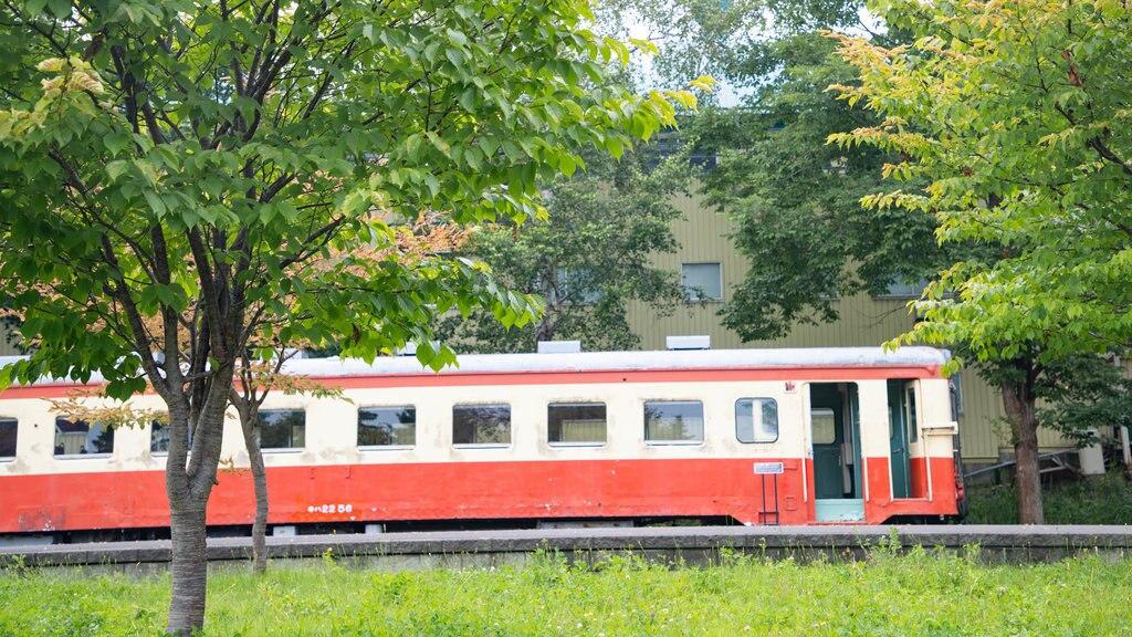Otaru City General Museum Ungakan featuring railway items