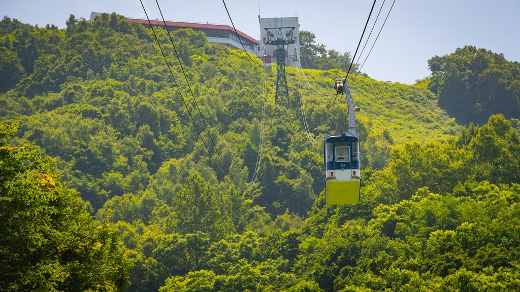 Otaru Tenguyama Ropeway which includes a gondola and landscape views
