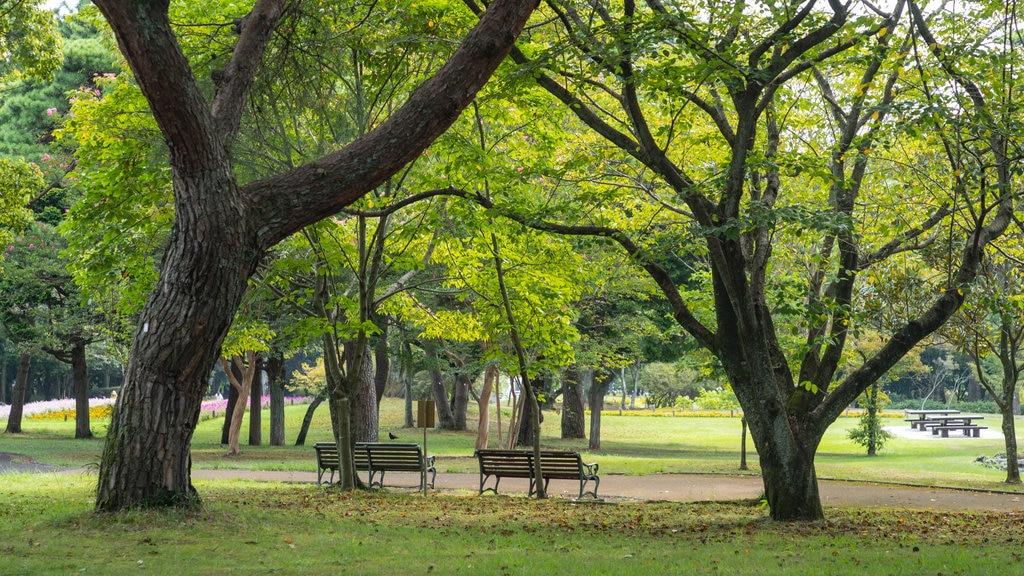 Beppu Park which includes a garden