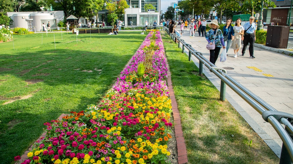 Odori featuring a garden and flowers