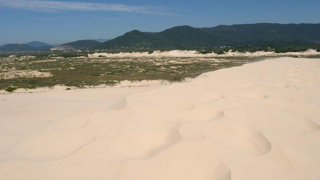 Rio Tavares featuring a sandy beach and landscape views
