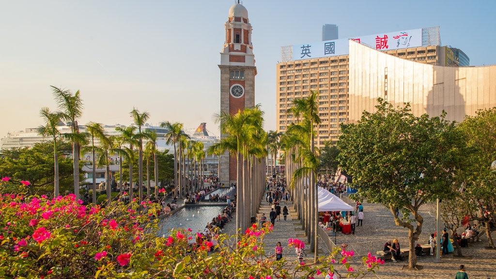 Tsim Sha Tsui Promenade featuring wildflowers, a sunset and heritage architecture