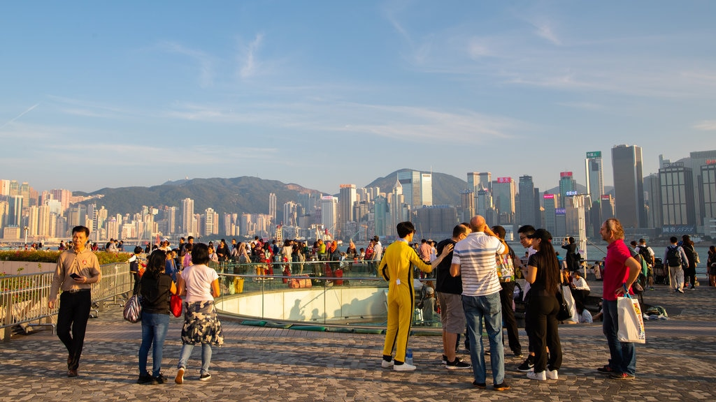 Tsim Sha Tsui Promenade featuring a sunset and a city as well as a large group of people
