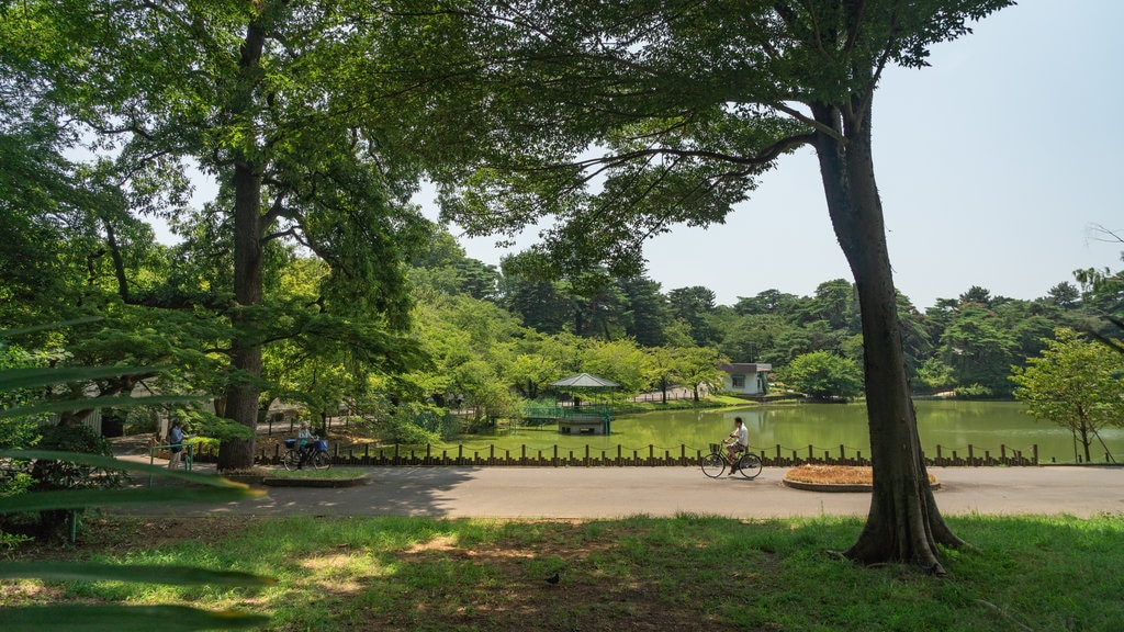 Omiya Park which includes a lake or waterhole and a garden