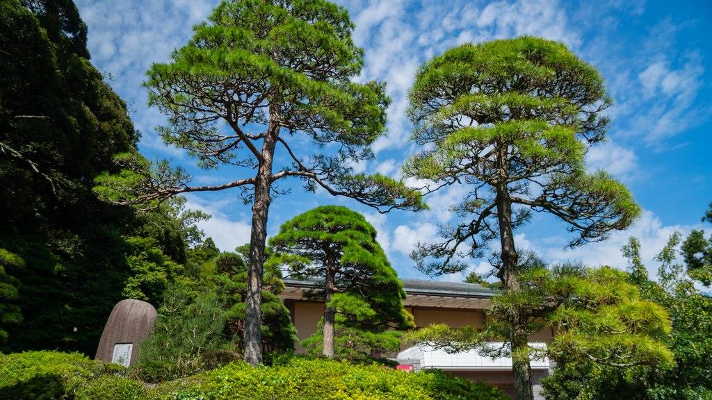 Naritasan Park showing a garden