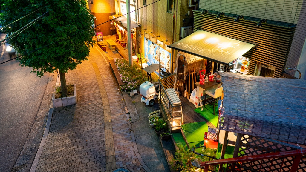 Narita showing night scenes