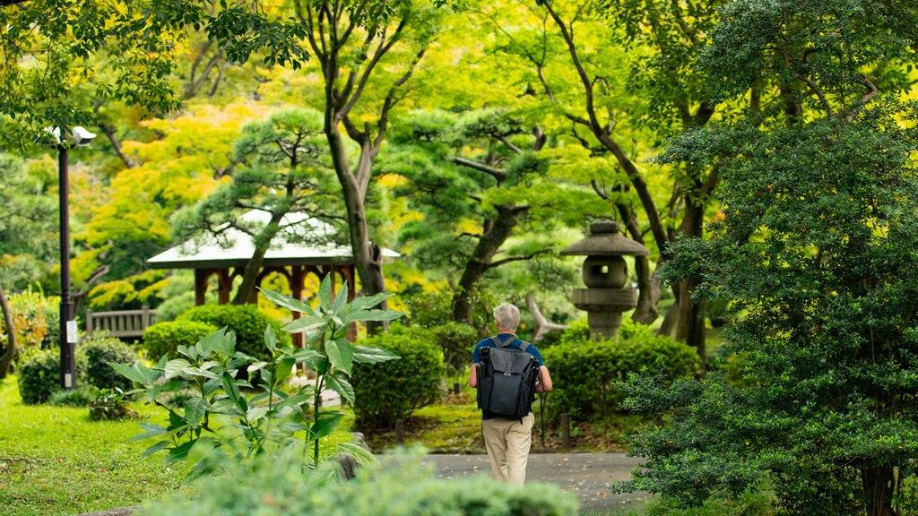 Hibiya Park showing a park