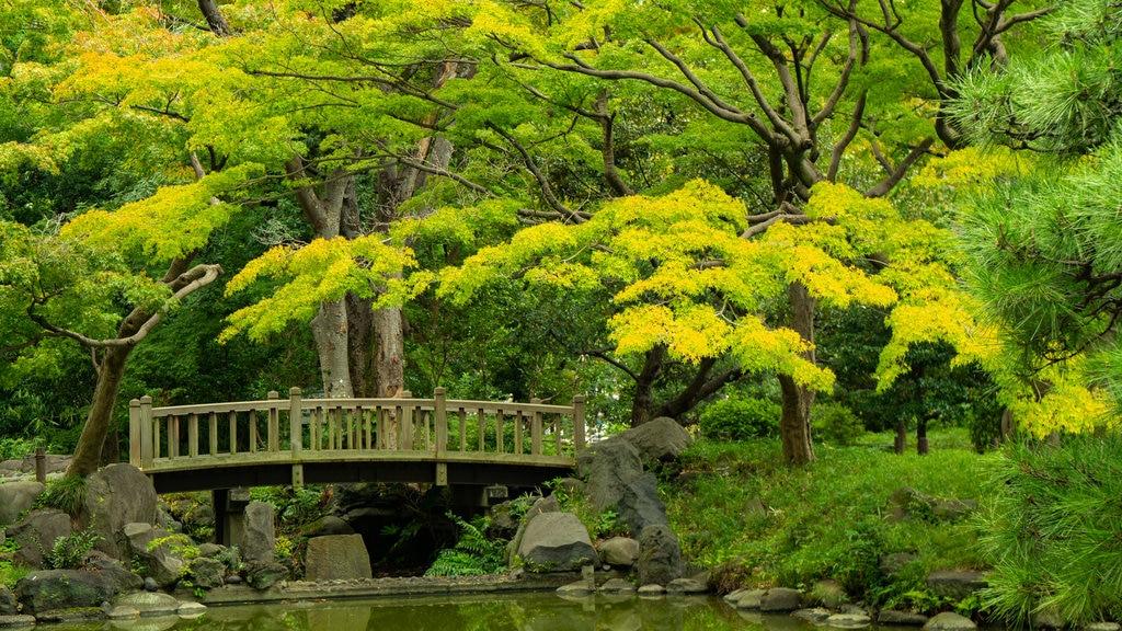 Hibiya Park featuring a park, a pond and a bridge