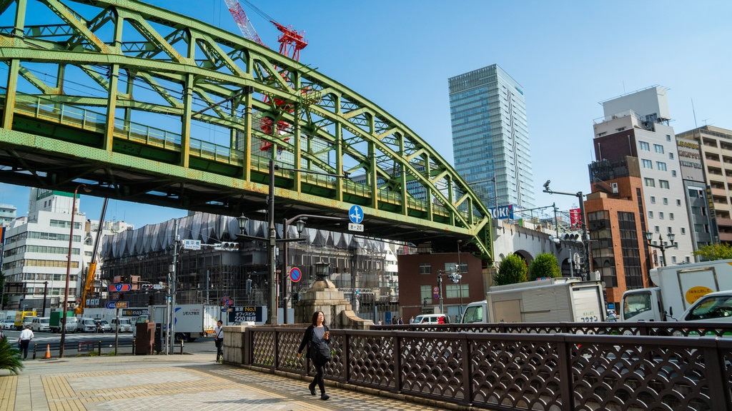 Chiyoda showing a bridge and a city