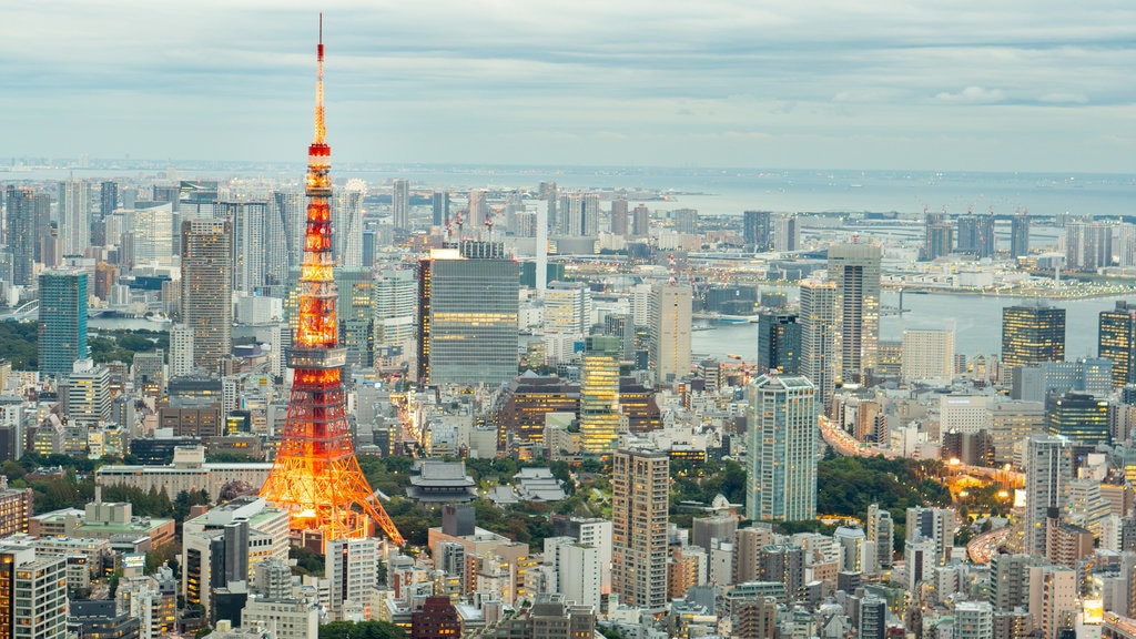 Tokyo featuring a monument, a city and landscape views