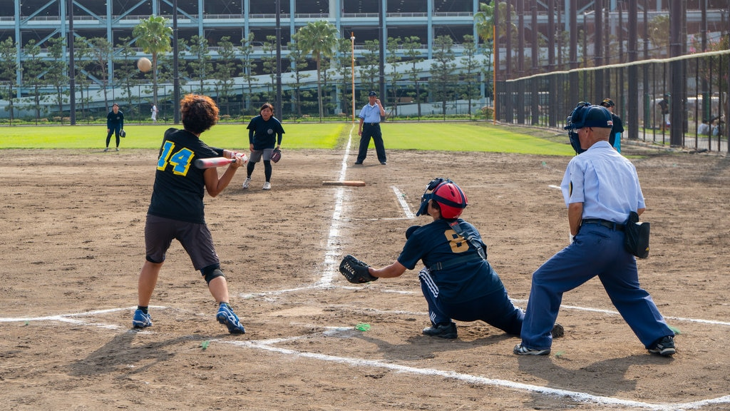 Urayasu Sports Park which includes a sporting event as well as a small group of people