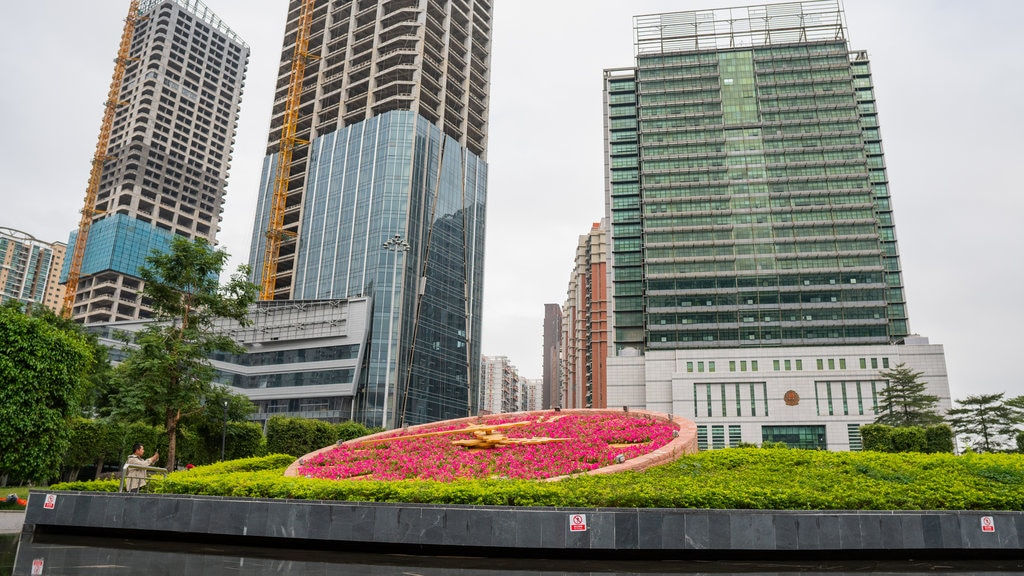 Shenzhen showing a city, flowers and a park