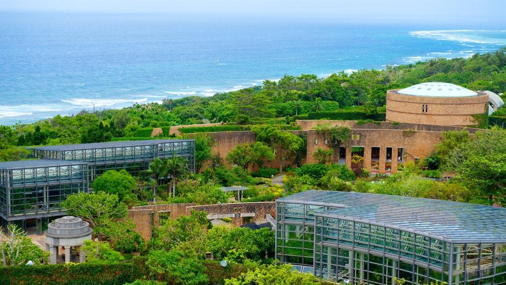 North Okinawa showing landscape views, general coastal views and a coastal town