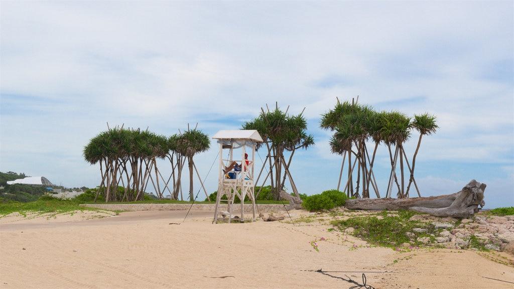 North Okinawa featuring a beach and general coastal views