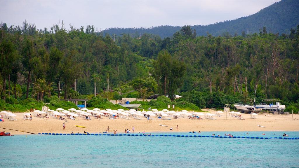 North Okinawa showing a beach and general coastal views