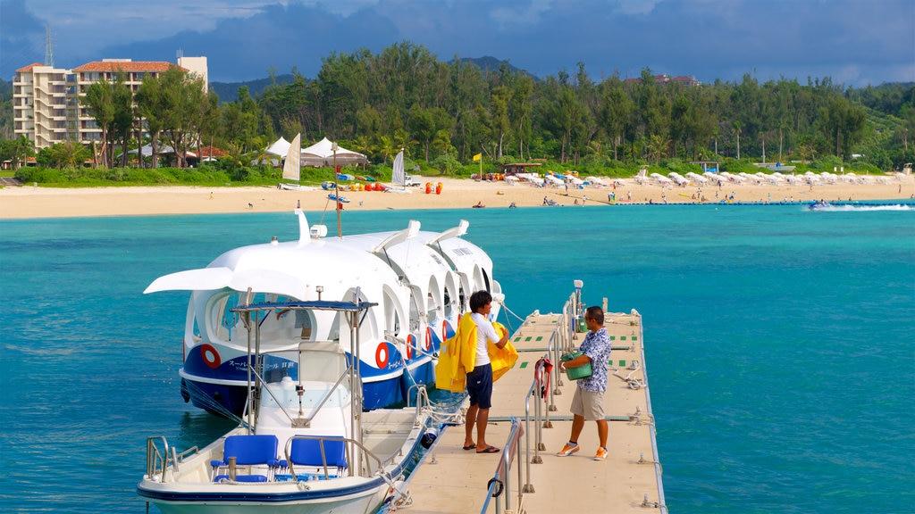 North Okinawa showing general coastal views