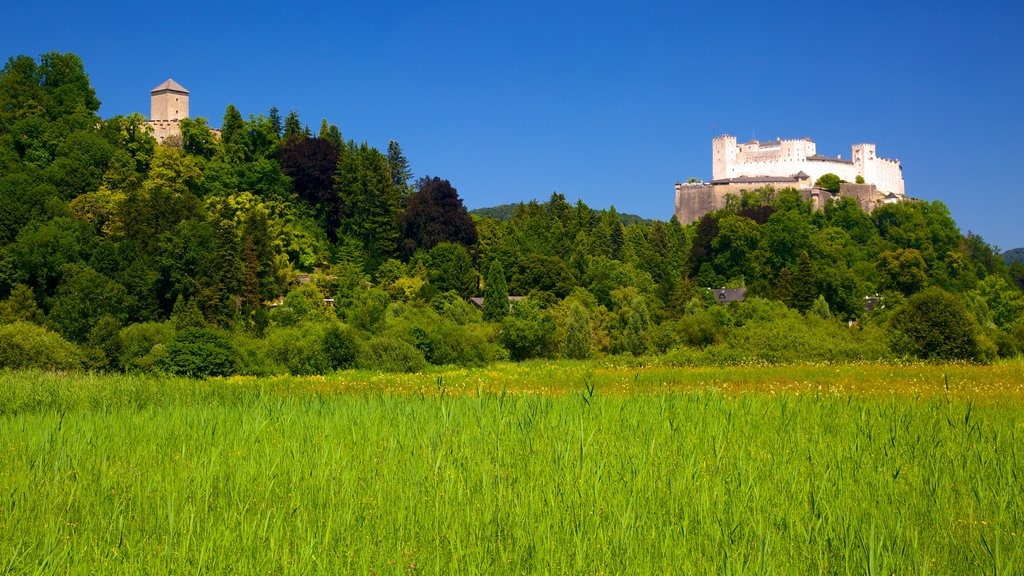 Festung Hohensalzburg which includes landscape views and a castle